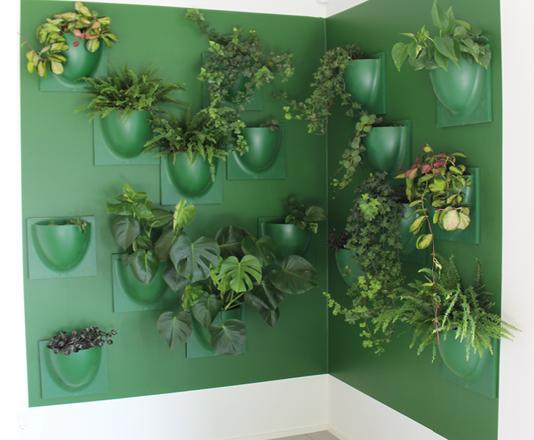 porte plante mural interieur